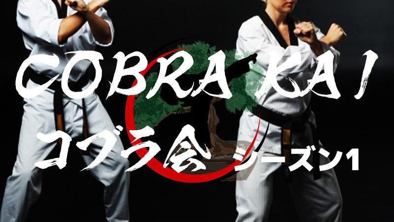 【海外ドラマ】おすすめ「コブラ会 Cobra Kai」シーズン1のネタバレ有あらすじ・キャスト・感想・評価・レビューなど徹底解説