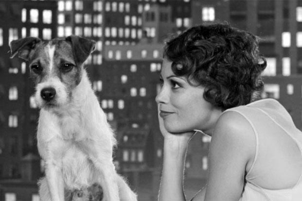 俳優犬がすごい!